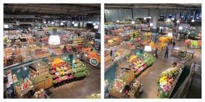 Whole Foods LP Escalator View