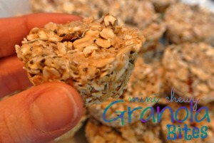 mini chewy granola bites