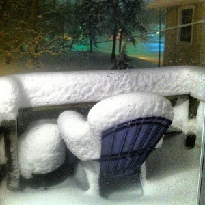 springfield snow