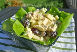 curried chicken salad 4