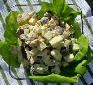 curried chicken salad 5