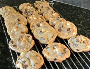 lauren's cookies 4