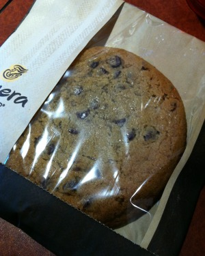 panera chocolate chip cookie
