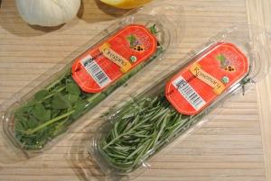 fresh oregano and rosemary