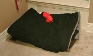 mac's bed